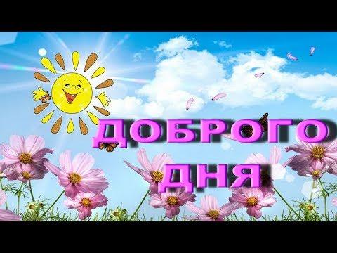 Пожелание доброго дня | Поздравления | Пожелания