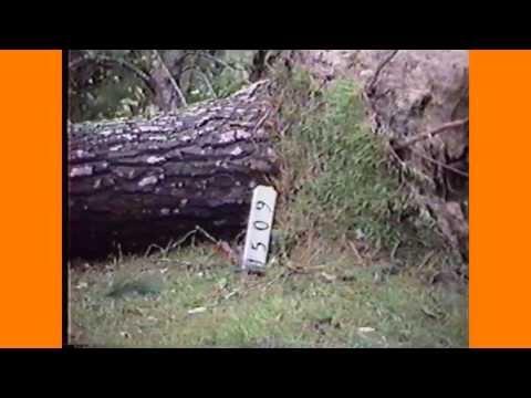 Hurricane Hugo 1989 Florence, SC with Tom Kinard radio commentary - amateur video