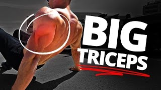 The Exercise You NEED For Big Arms (Bodyweight ONLY!)