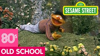 Sesame Street: Learn About The Insects In Your Neighborhood