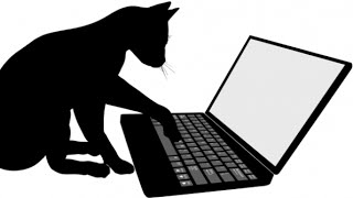 How To Use the Cat Command In Linux