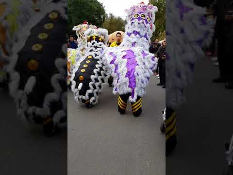 CYSM Lion Dance Interacting With The Crowd Down By The Yarra River Food Stalls Part Four