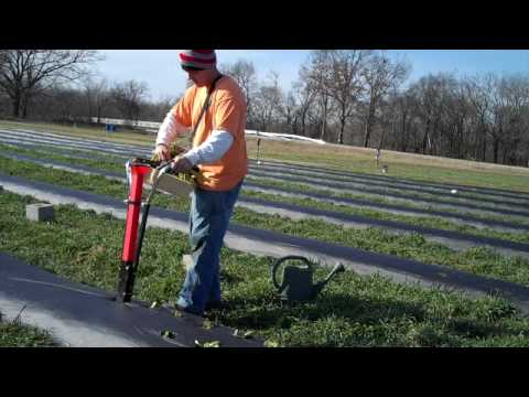 Hatfield Transplanter