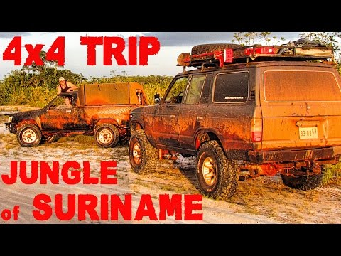 SURINAME JUNGLE: 4x4 trip Tibiti Creek
