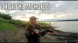Щука ловля на спиннинг Поймал Крокодила