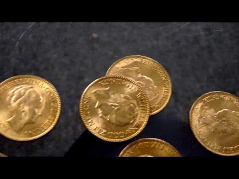 Netherlands Guilder Gold Coin