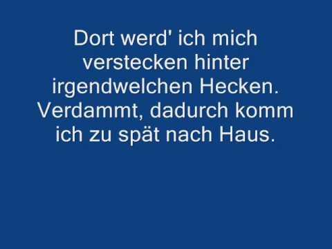 Die Toten Hosen - Im Wagen vor mir  [+Lyric].