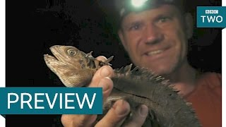 Steve catches a water dragon - Down the Mighty River with Steve Backshall: Episode 2 Preview