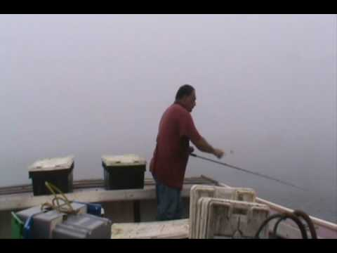 Mackerel fishing in the gulf of maine youtube for Maine out of state fishing license