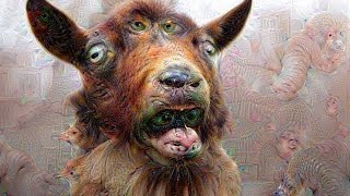Google Deep Dream Images ~38 min Slideshow (Before & After Photos)