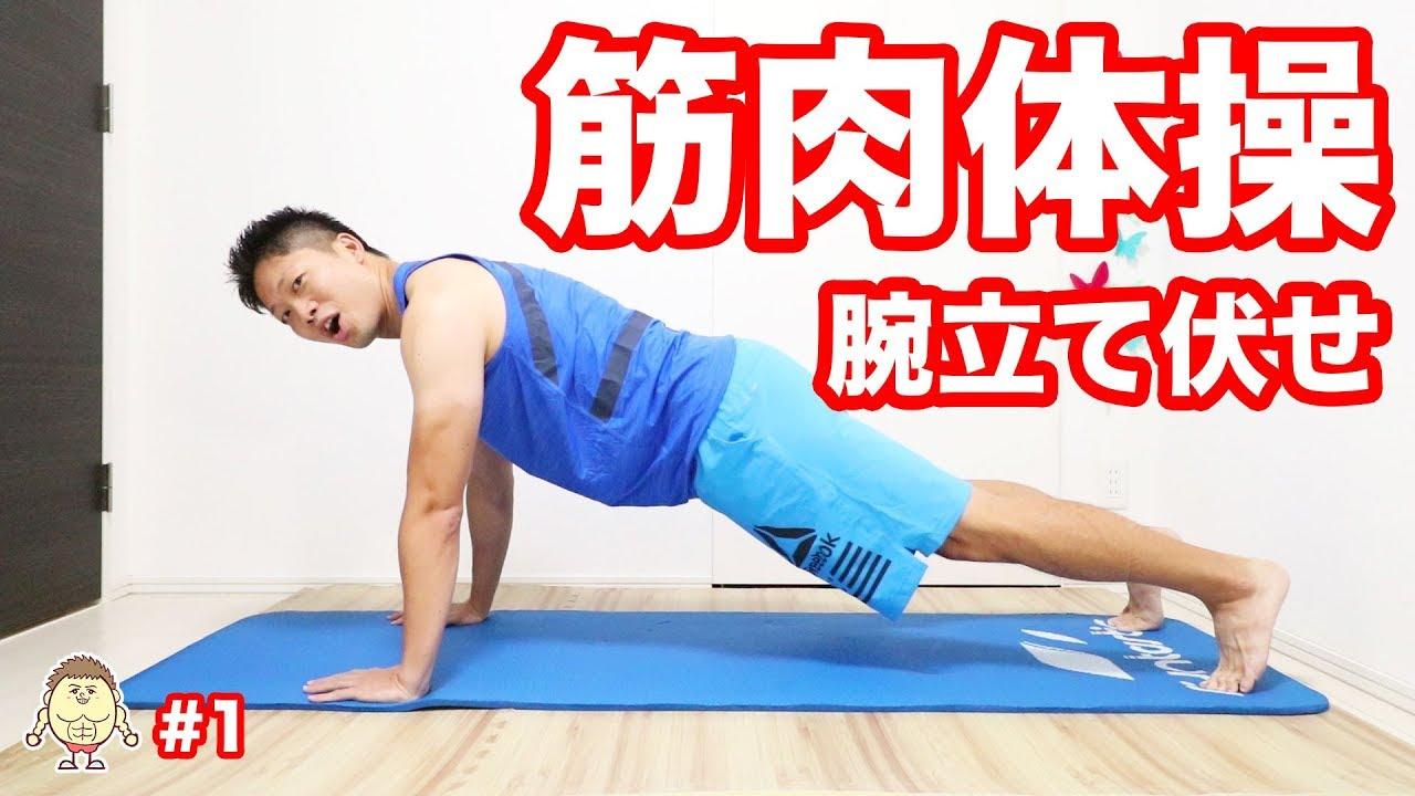 筋肉 体操 腕立て伏せ