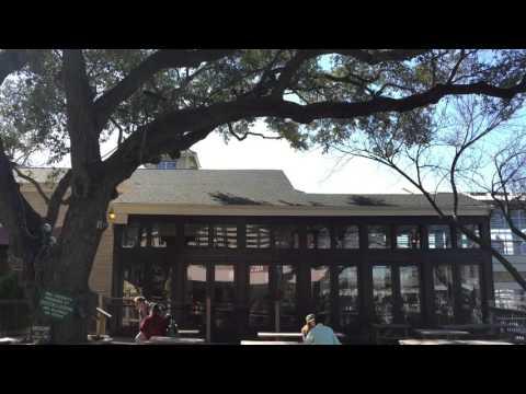 Cafe Mozart Austin, TX