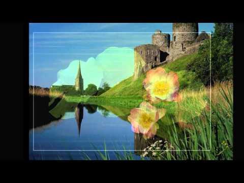 My Serenade - The Platters