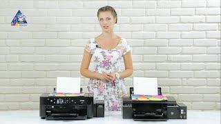 Epson L800 vs. L810 - сравнительный обзор принтеров