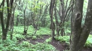2014 06 30 鼻曲山