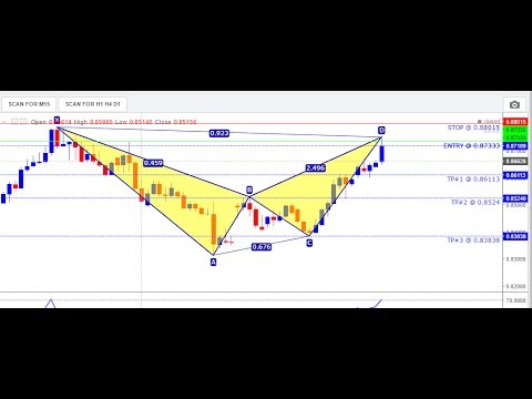 Forex Cracked Code Day 3