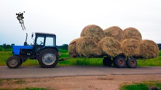 Синий трактор везет в прицепе Сено. Видео про трактор для детей