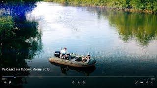 Рыбалка на Проне, Июнь 2018, Рязанская область.