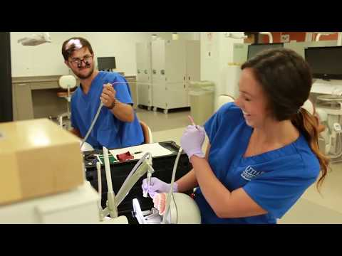 Day In The Life: Dental School Year 1 At Texas-Houston