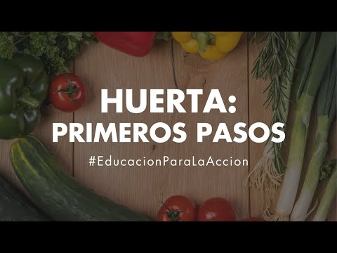 huerta:-primeros-pasos---educación-ambiental-digital-|-eco-house