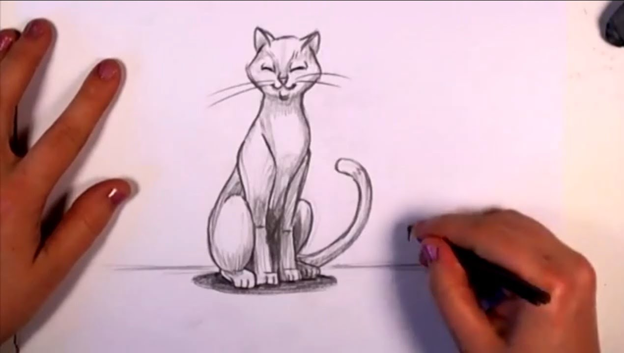 How to draw a cat in pencil cc youtube