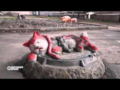 Всех не перережете: почему в Нижегородской области прячут свиней от чиновников