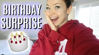 SPECIAL BIRTHDAY SURPRISE! | VlogsbyMeredith