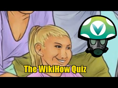 Wiki How Quiz - Rev [Vinesauce]