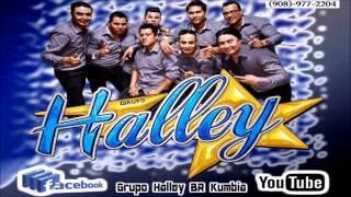 La Cumbia De La Zorra  2017 Grupo Halley (Limpia)