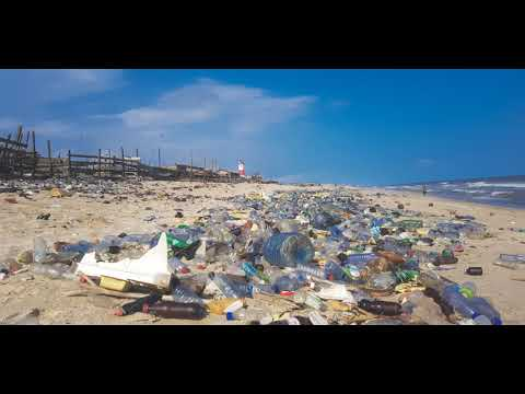 Environmental impact of plastics | Wikipedia audio article