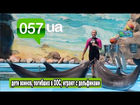 Новости Харькова: Белые киты и дельфины устроили шоу для детей героев ООС