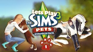 Lets Play: The Sims 3 Pets (Part 1) Welcome!