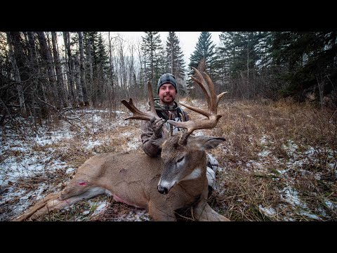 Giant Alberta Bush Whitetail - Ancient Old Non-Typical Buck