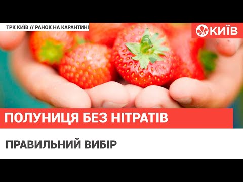 Телеканал Київ: Як вибрати свіжу і смачну полуницю?