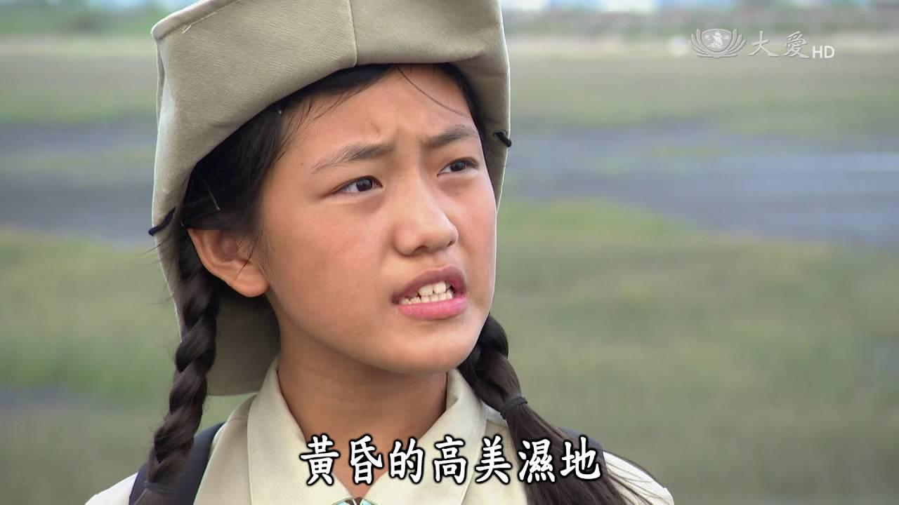【呼叫妙博士】20160930 - SOS!高美濕地 - YouTube