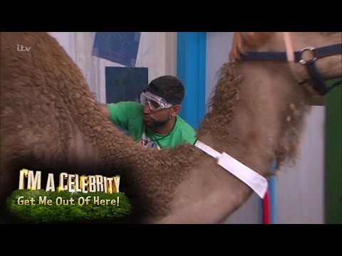 FIRST LOOK: Amir & Vanessa Try the Fright House Bushtucker! | I'm A Celebrity... Get Me Out Of Here!