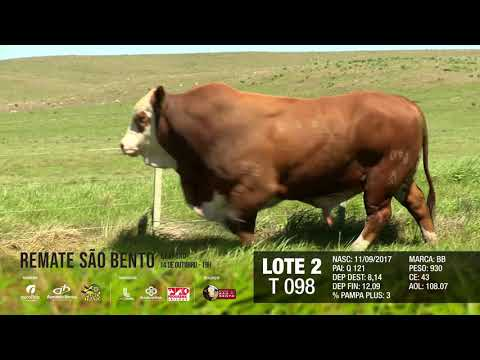 LOTE 02 T 098