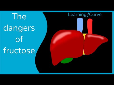 How bad is fructose?