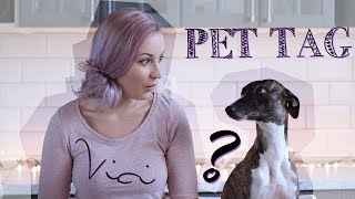 PET TAG w. VICI the whippet