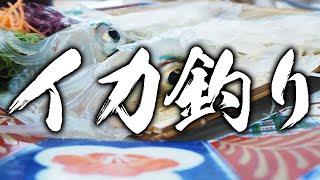 見たらイカを釣りに行きたくなる動画5選!!