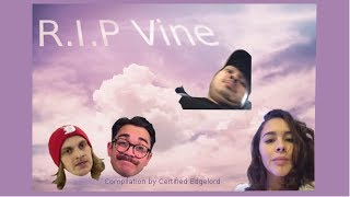 My Favorite Vines [R.I.P. Vine]