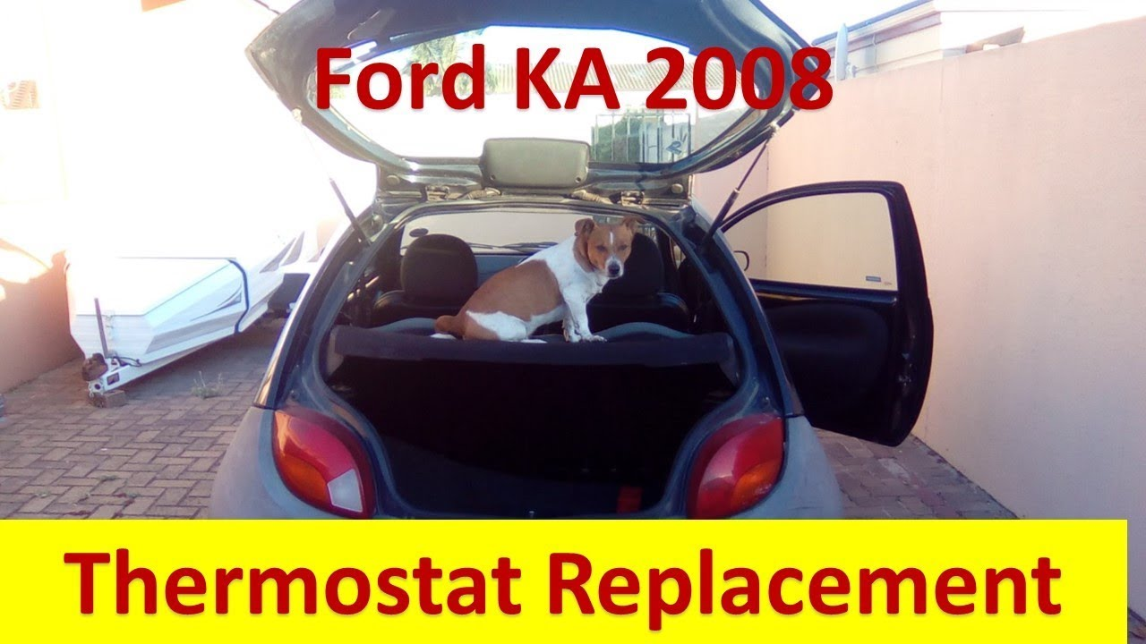 Ford Ka  Thermostat Replacement