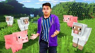 Видео Майнкрафт для новичков - Что делать Нубу в Minecraft - Гейм шоу Кубик Нубика.