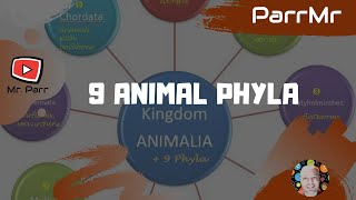 9 Animal Phyla Song