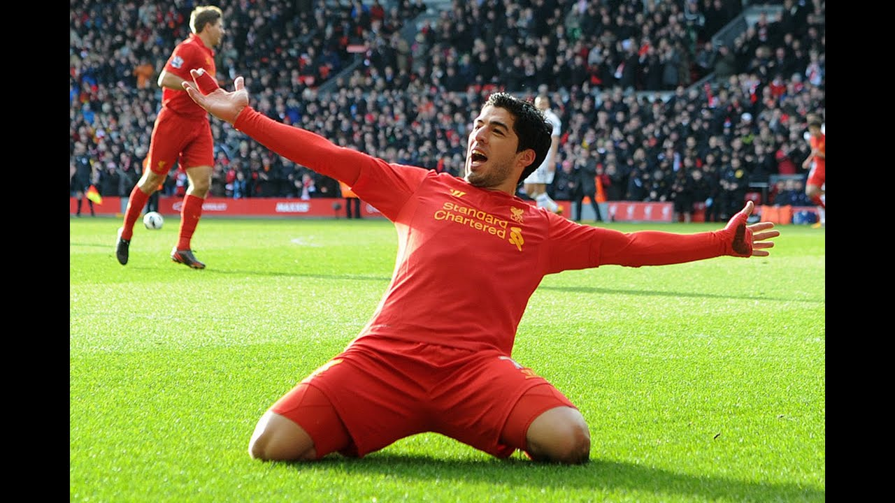 Image gallery suarez liverpool 2014 for Farcical synonym