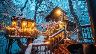Magical Treehouse with a Wood Fired Hot Tub