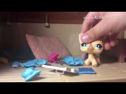 Clean your room!  LPS Skit  inspired!