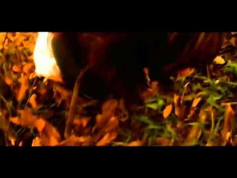 Trailer do filme O Derradeiro Assalto