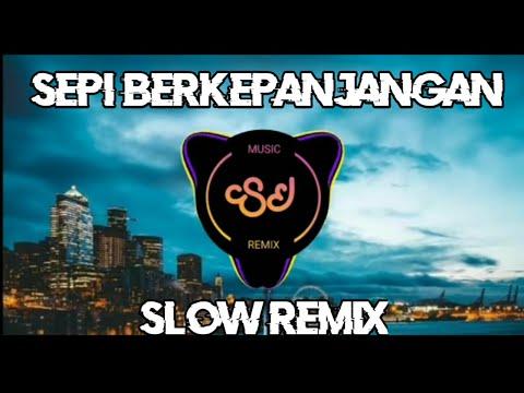 DJ SEPI BERKEPANJANGAN - THOMAS ARYA