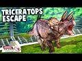 Jurassic World Evolution - DINOSAUR BREAK OUT (Jurassic World Evolution Gameplay Triceratops Escape)